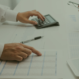 3. Diseño y presupuesto
